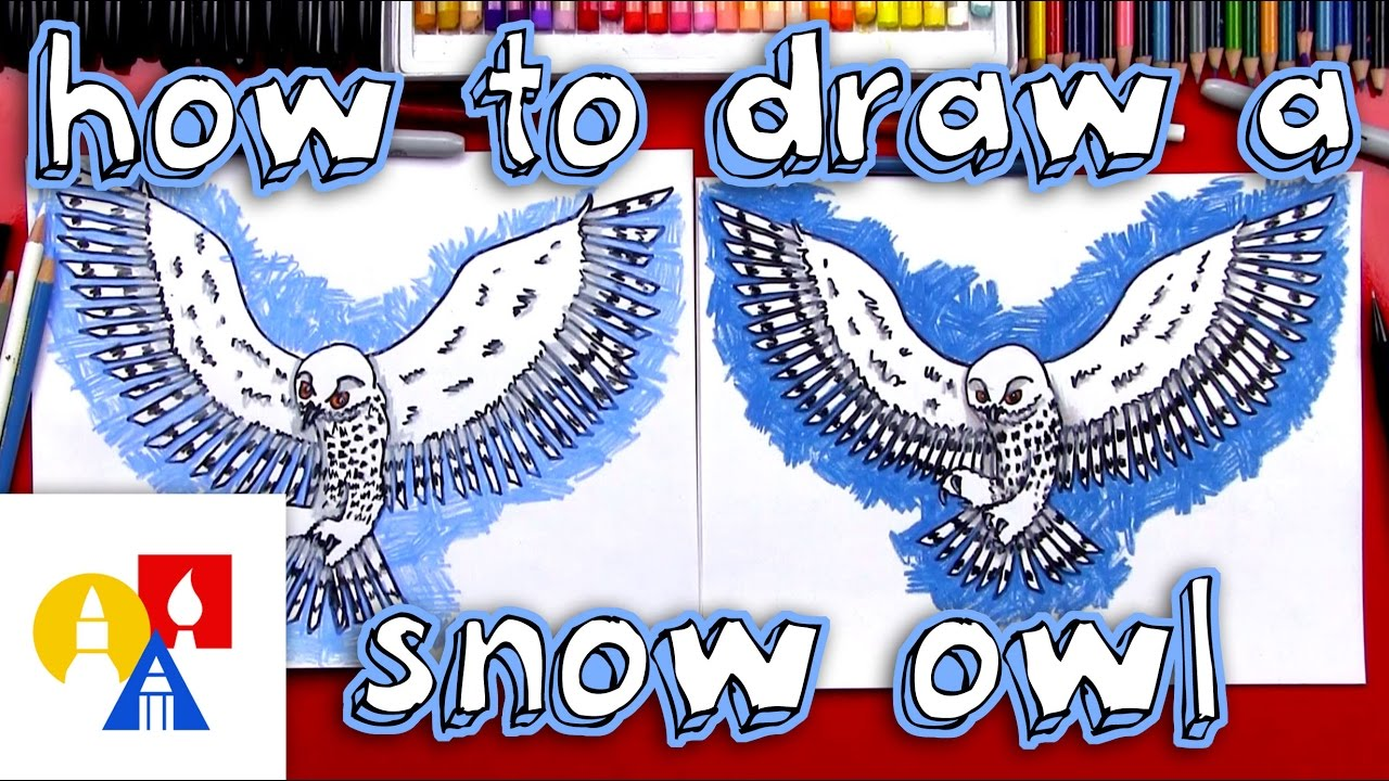 how to draw a realistic snow owl youtube
