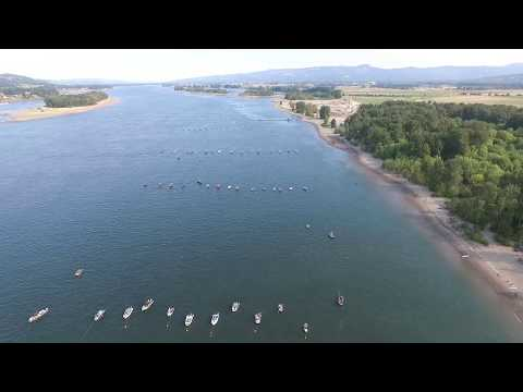 Columbia River Salmon Hoglines - Lewis River Sept 2