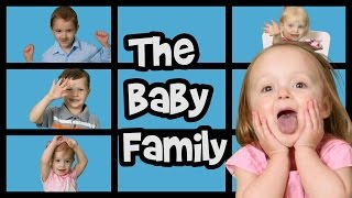Baby Family Song | Finger Family Song | Nursery Rhymes | Adorable Babies