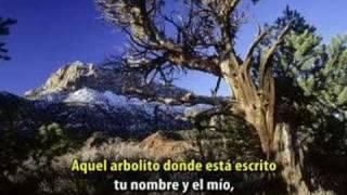 EL ARBOLITO EN KARAOKE