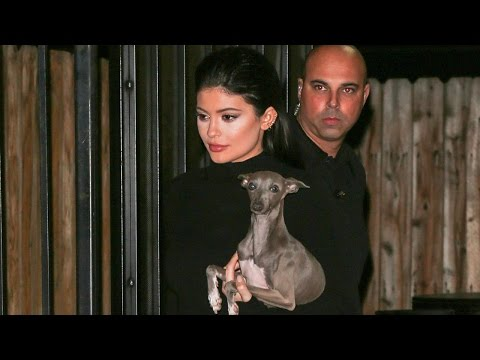Kylie Jenner Gets Investigated by Animal Control!