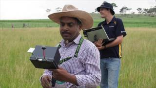 Using drone technology at UNE's SMART Farm