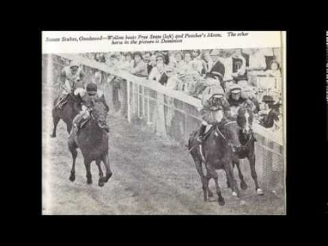 Wollow 1976 Sussex Stakes radio