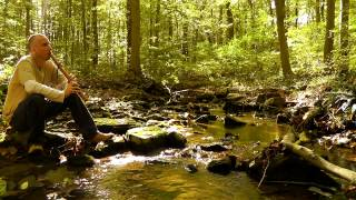 Relaxing Nature Journey & Walkabout #6 (Non-speaking) - Flute, Trickling Stream, Crunchy Leaves
