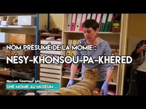 Les secrets de la momie du muséum Liais à Cherbourg - épisode 1