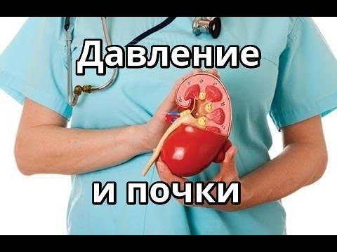 Как влияют почки на артериальное давление