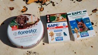 Ошейник от Блох и Клещей Форесто - Bayer Foresto