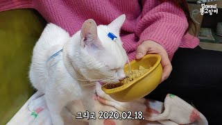 2020.02.11~2020.02.18  Ato's discharge from hospital then readmission