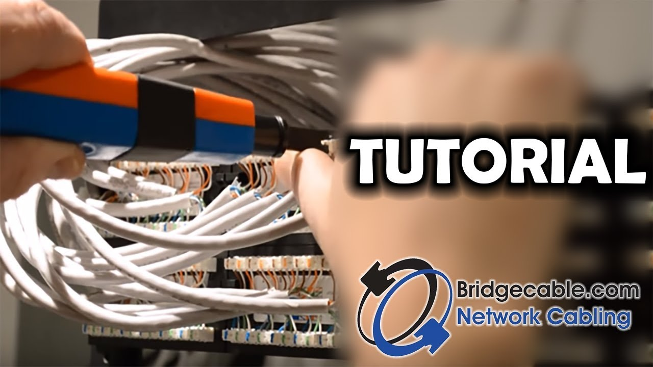 how to punch down cat6 network cabling into a patch panel rh youtube com cat 5 patch panel wiring cat 6 patch panel cable management [ 1280 x 720 Pixel ]