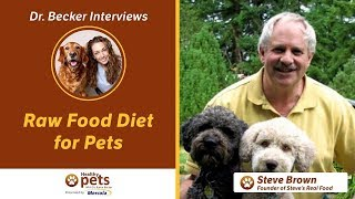 Dr. Becker and Steve Brown on Raw Food Diet for Pets (Part 2)
