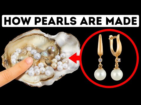 Oysters Make Pearls to Survive, Here's Why