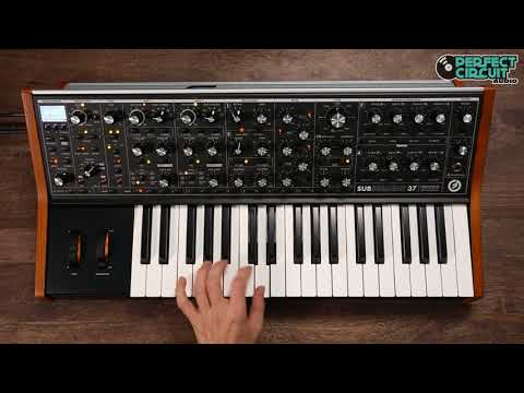 Moog Subsequent 37 Sounds