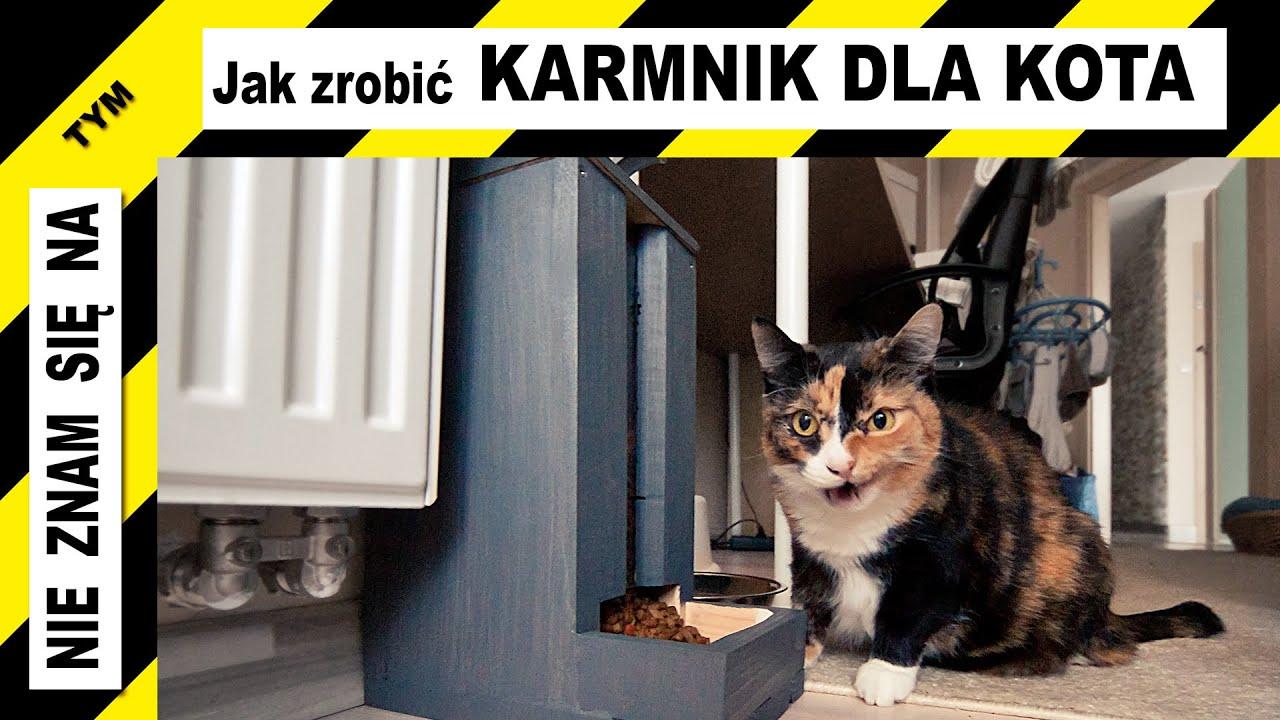 Jak zrobić karmnik dla kota - podajnik karmy