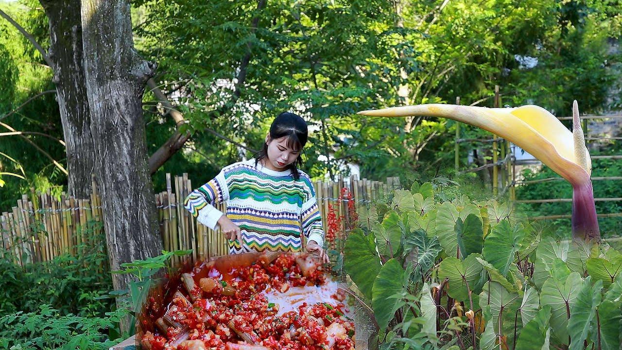 Pick a crate of taro lotus, make two jars of taro stem sauce 摘一背簍芋荷花,做兩罐芋梗醬丨Lizhangliu Channel
