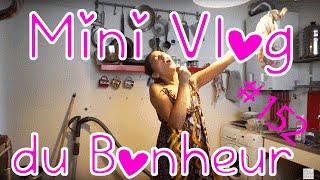 Je nettoie enfin mon lombricomposteur! - Mini Vlog Bonheur #152