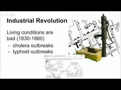 History of Environmental Movement 2.0