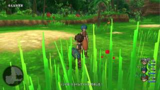 Dragon Quest X [PC] (No Commentary) #002, Aba-sama's Mission; Hunting around Eteene