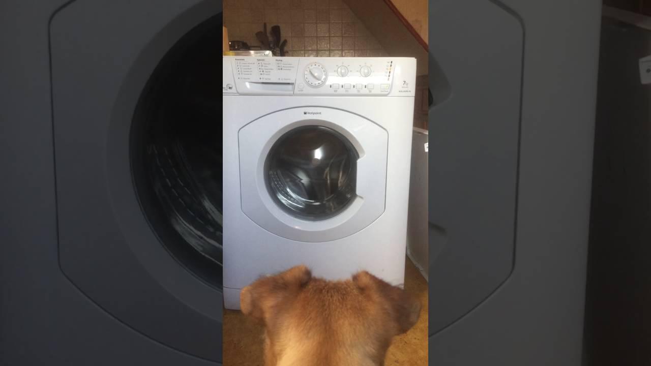 Hotpoint Aquarius WDL540 Washer Dryer Feet x1