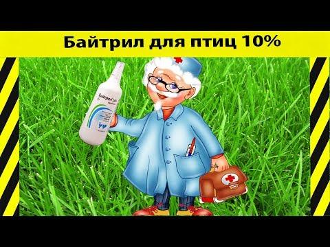 #жидкий #помет #птица # #понос