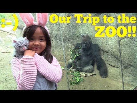 Family Toy Channel: Children's Visit to the ZOO! African Lions, Gorillas, Monkeys, Elephants & more!
