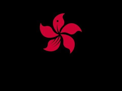 1st ODI: Hong Kong v PNG