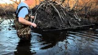 Beaver Trapping - Lodge Set