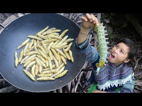 survival skills hmong - Threatened by silkworms - Delicious cooking with silkworms