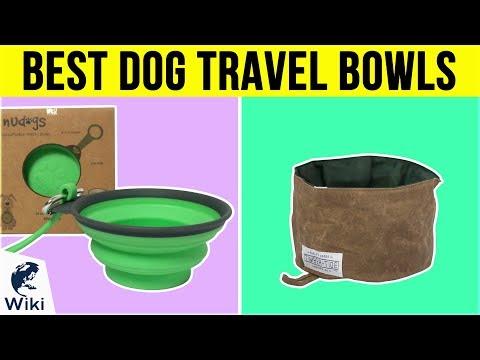 10 Best Dog Travel Bowls 2019