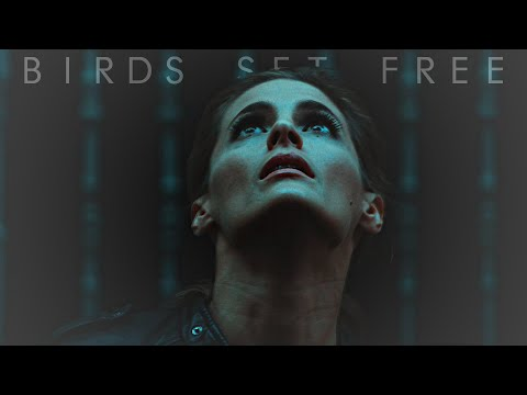 kate beckett | bird set free