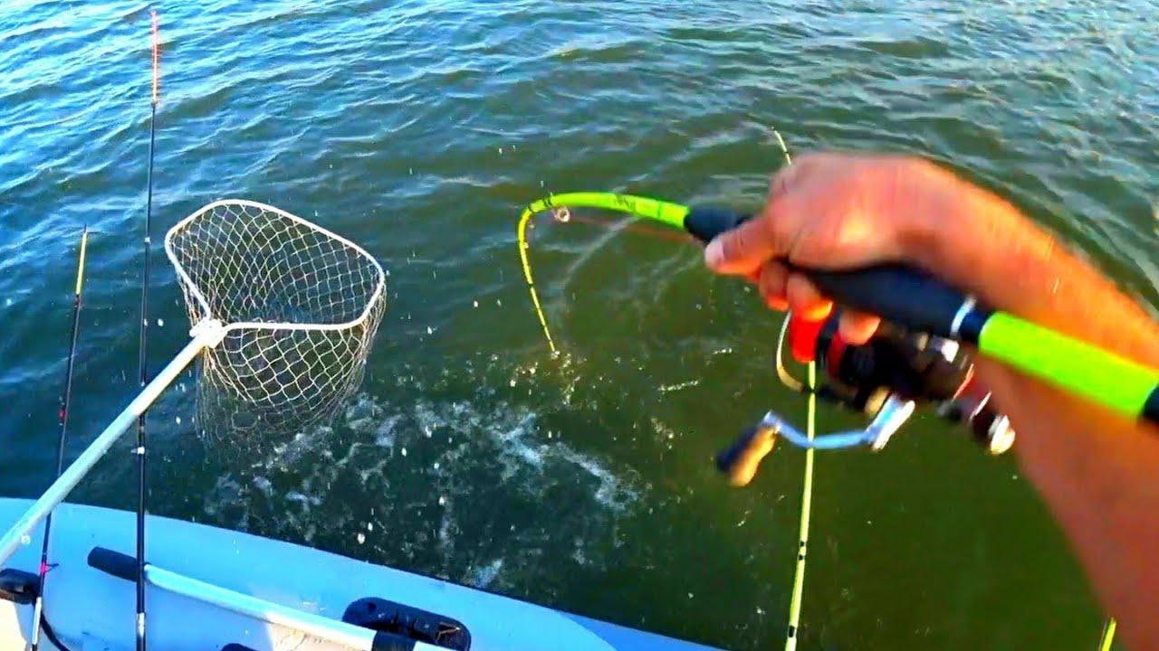 ВАЖНО для всех РЫБАКОВ В КОНЦЕ рыбалка на сазана ОСЕНЬЮ 2020