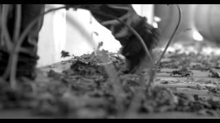 Adam Tas - Draadloos Dae & Reën