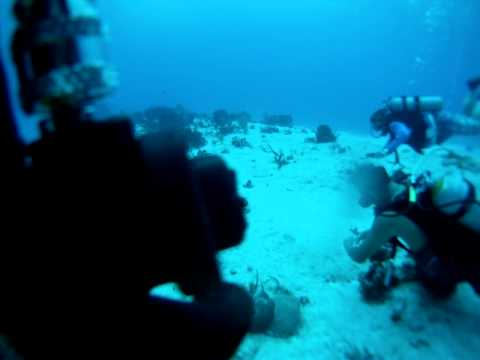 Grand Cayman Islands Dive Site #2