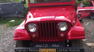 JIAG - Jeep Cj5 - 1964