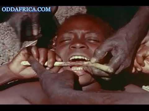 Oddafrica Oddafrica