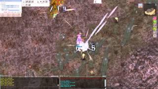 Ragnarok Online Battle Scholar
