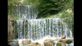 DARIO DOMINGUES   THE SOURCE OF ALL WATERS