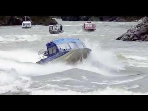 Motorized Salmon | Wacky Speed Boats #9 | Avalon Luxury Pontoons