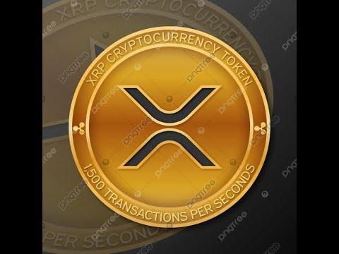 cursos bitcoin barcelona binär optionen seriös?