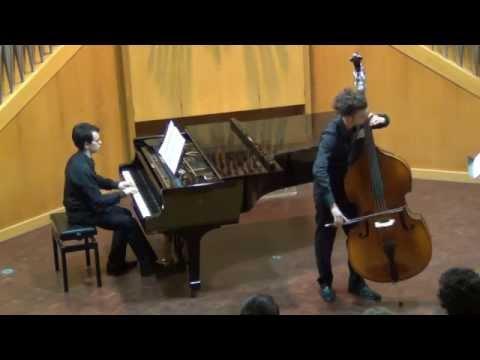 V. PICHL - Concerto per Violone