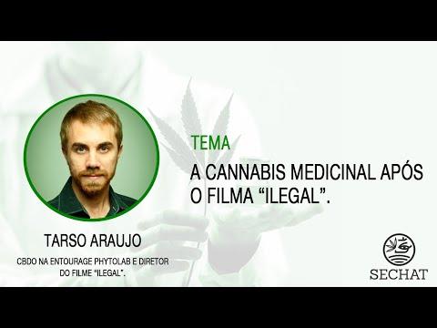 """""""A Cannabis Medicinal após o filme """"Ilegal"""" - Com Tarso Araujo"""