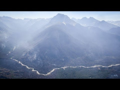 Aerials of wildfire damage in B.C.'s Kootenay National Park