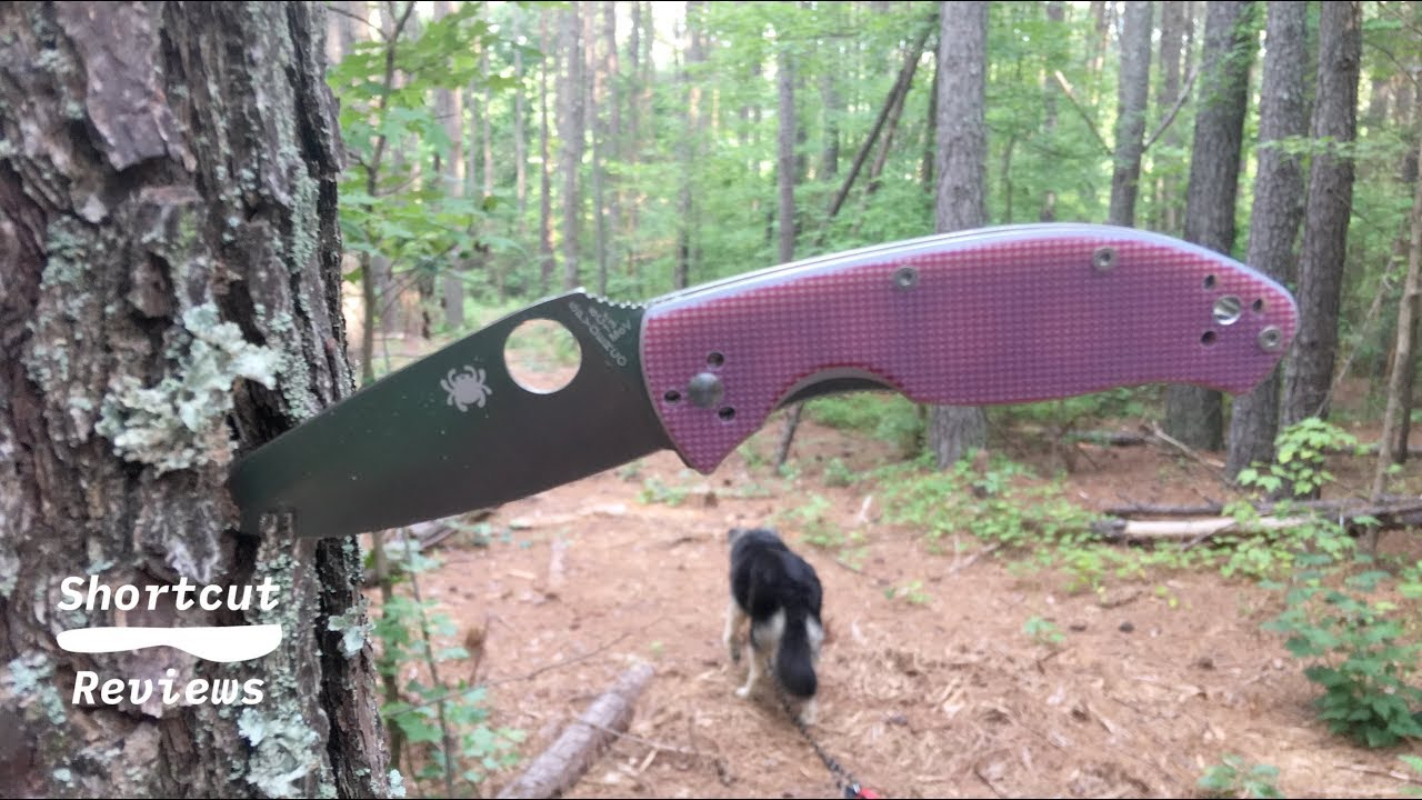 Spyderco Red Tenacious presented by Shortcut Reviews (Now in 4K)