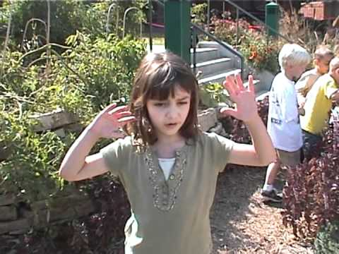 Children explain why their Nature Explore outdoor learning space is important.