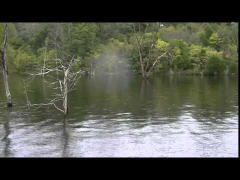 cedar creek lake, ky