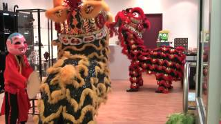Darwin Chung Wah Society Lion Dance Troupe - Blessing of Bling Jewellery and Taylor's Toy Box