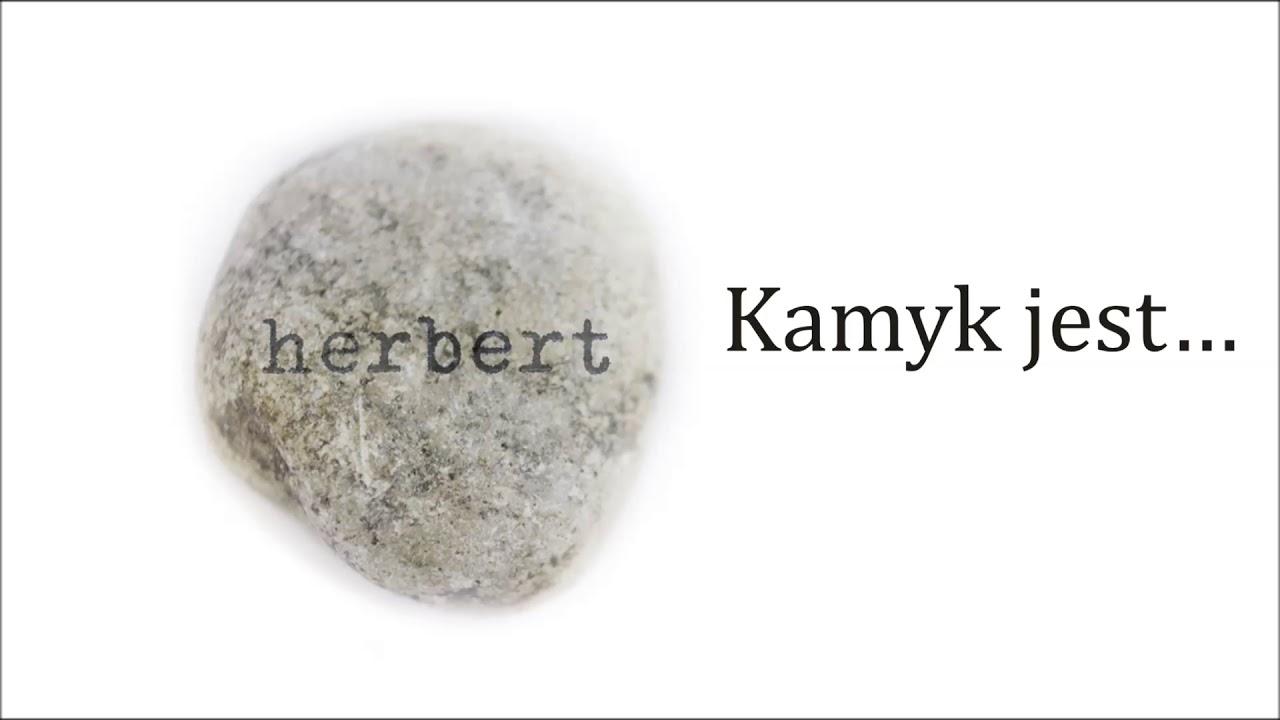 9. Karimski Club feat. Maciej Stuhr – Kamyk jest…