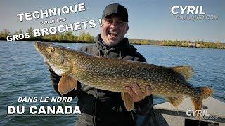 normes-brochets-dans-le-nord-du-canada-part-12