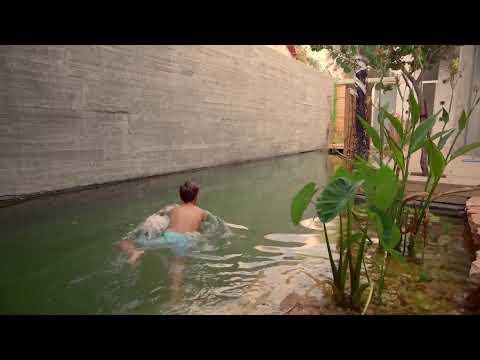 Pools by Nature / Natural swimming pools / Bio pool