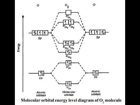 Molecular Orbital Energy Level Diagram Of Nitrogenoxygen Youtube