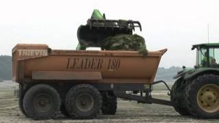 Algues vertes: tourisme en baisse dans les Côtes d'Armor